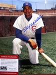 "BILLY WILLIAMS SIGNED 8"" x 10"" PHOTO w/CAS COA"